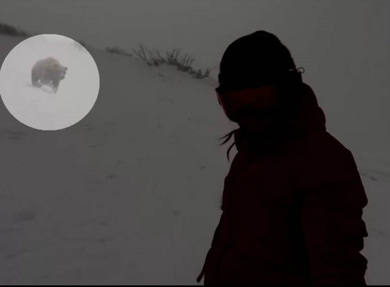Snowboarder and the bear, Sky News/Facebook