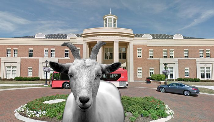 Radford University Goat abuse