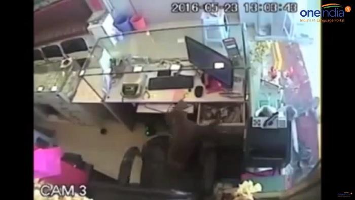Monkey thief, OneIndia News/Youtubews